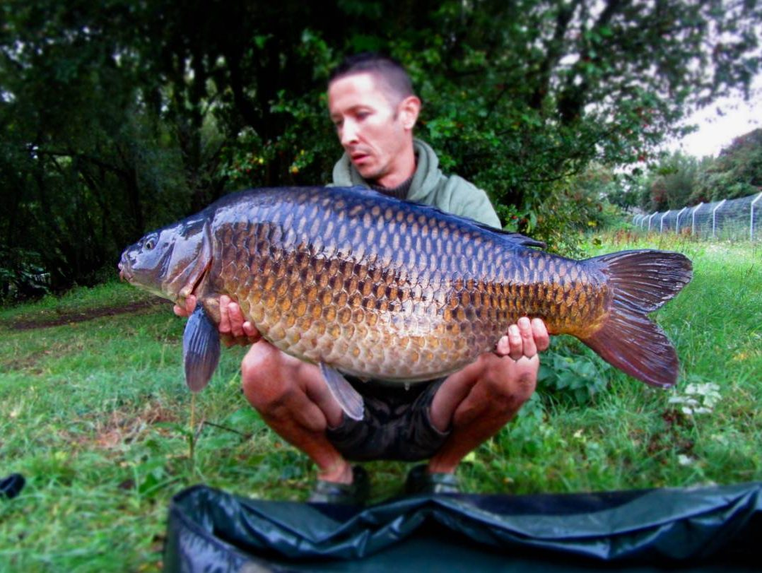 Joel Parry, 29lb 1oz, Ringwood DAA Club Water, The Crave